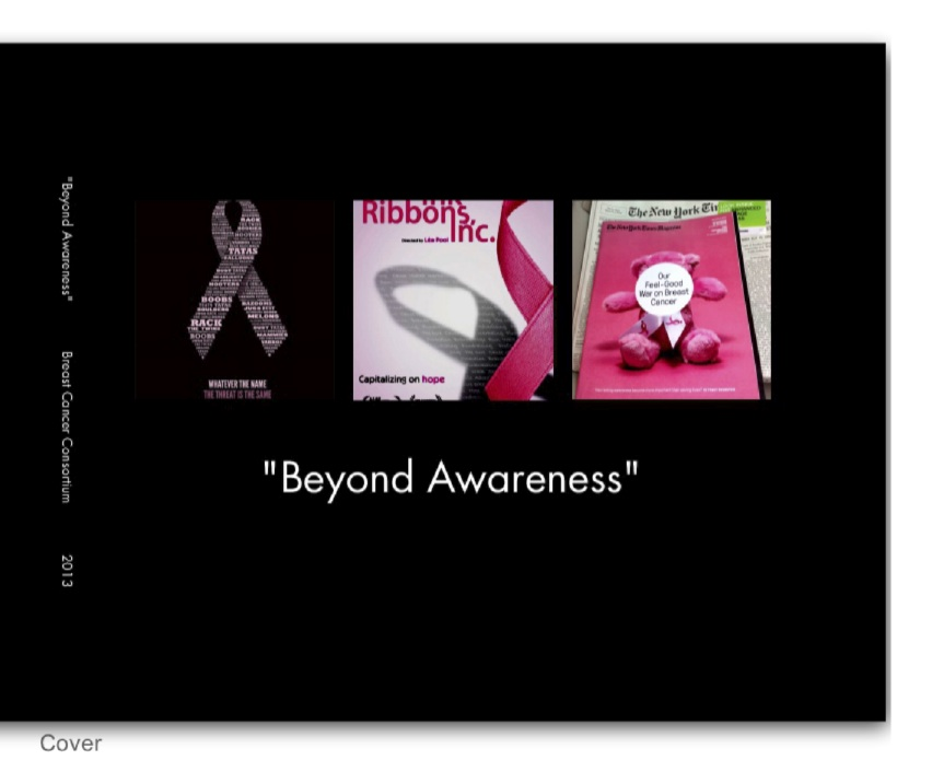 Beyond Awareness Booklet COVER crop 7-20-13