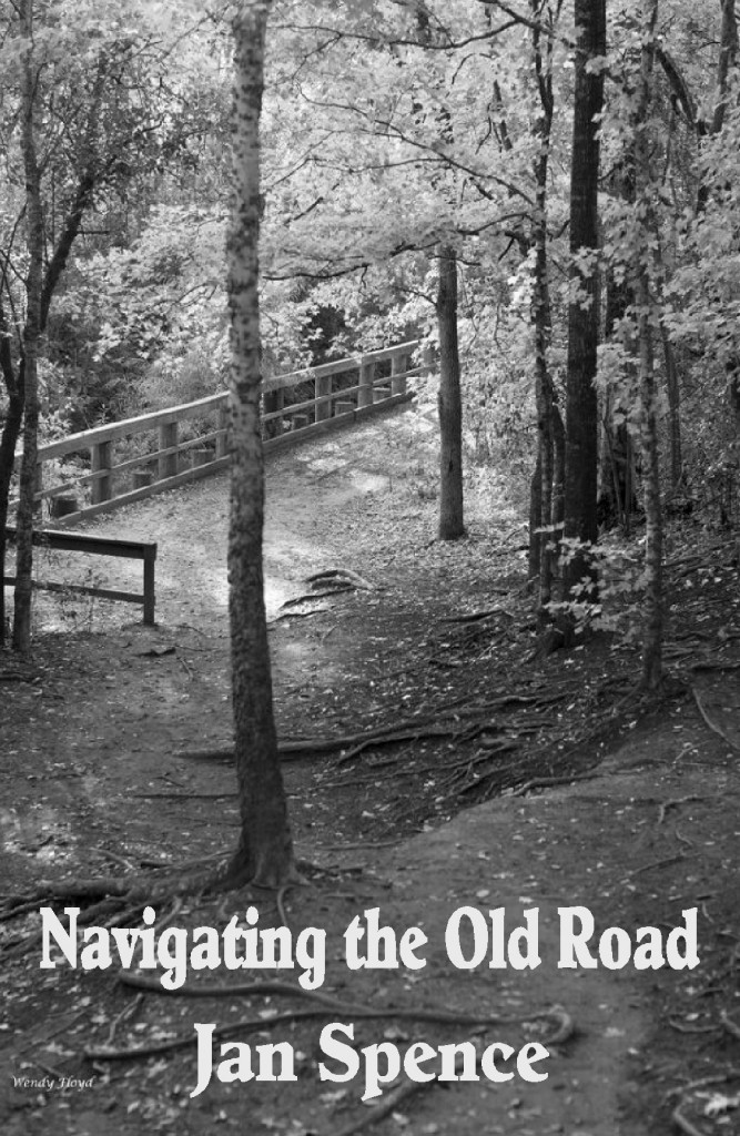 cover-of-navigating-the-old-road