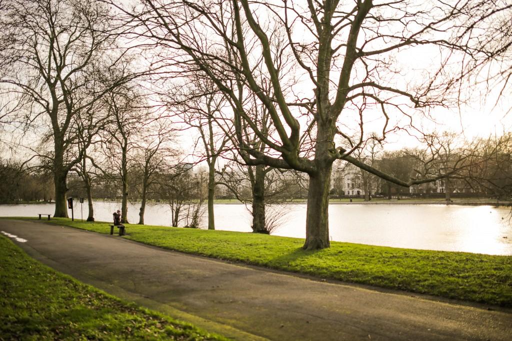 Park Walk negspace-00027