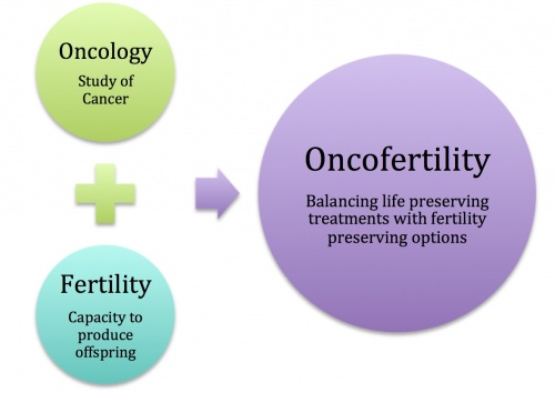 500px-summary_of_oncofertility